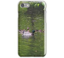 mallad, duck, family, waterfowl, duckling,  iPhone Case/Skin