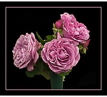 Roses for U Photographic Print