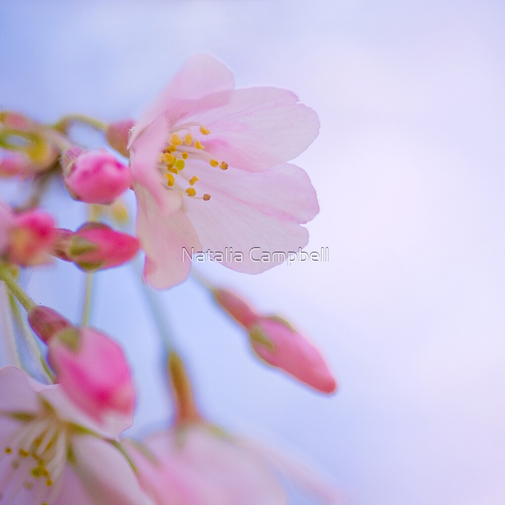 'Tis my faith that every flower enjoys the air it breathes... by Natalia Campbell