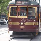 Melbourne's tram by sharon wingard