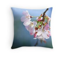 Those who dwell among the beauties and mysteries of the earth are never alone or weary of life. . .  Throw Pillow