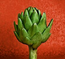 Artichoke by Toky Photography