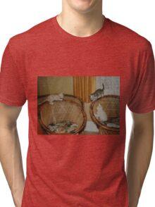 kittens Tri-blend T-Shirt