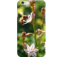 The life of a Bee iPhone Case/Skin