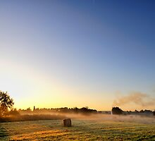Morning Light II by Lea Valley Photographic