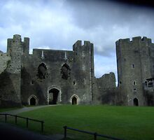 Within Walled Caerphilly Castle Grounds by anaisnais