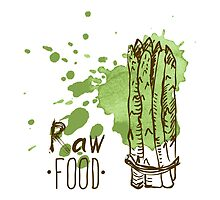 hand drawn vintage illustration of asparagus by OlgaBerlet