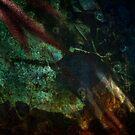Watery Mystery by Sybille Sterk