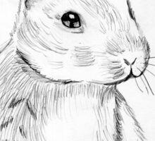 Bluebell the Fluffy White Bunny Sticker