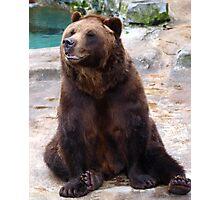 Un-BEAR-ibly Funny! Photographic Print
