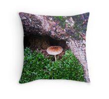 Fairy's Grotto Throw Pillow