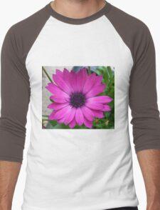 Perfect Pink Petals - Cape Daisy Close-up Men's Baseball ¾ T-Shirt