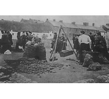 Potato Market Drogheda, turn of the century. Photographic Print