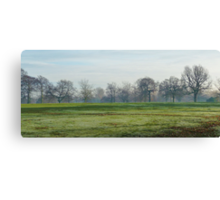 Frosty Park 2 Canvas Print