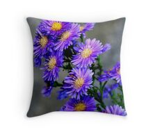 Asters Aglow Throw Pillow