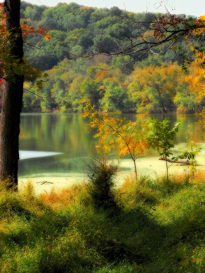 Radnor Lake by Karen  Helgesen