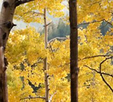 New Mexico Fall by doorfrontphotos