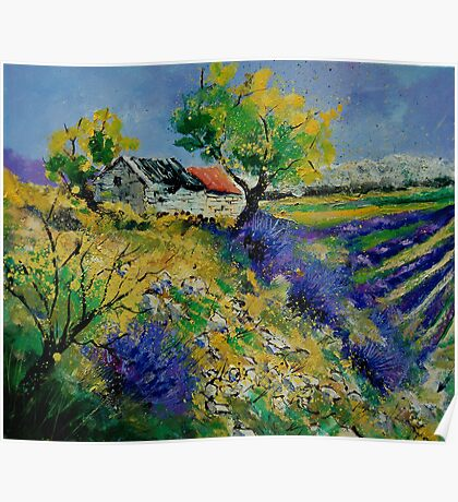 Provence 569090 Poster