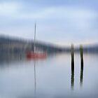 Bi - Poler Dream by Robert Armitage