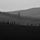 My Tuscany's mood by mrLEV
