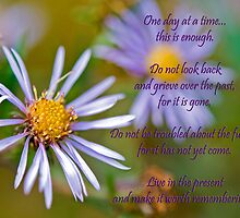 A Day At A Time by Maria Dryfhout
