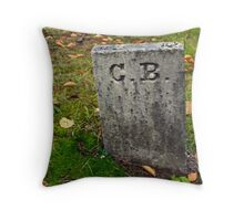 ...who is C.B.?... Throw Pillow
