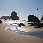 Oregon coastline by goddessteri211