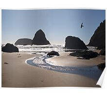 Oregon coastline Poster