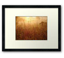 Warm Framed Print