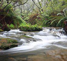 Leura Cascades (best viewed large) by Son Truong