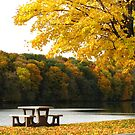 Autumn Picnic by lorilee