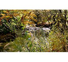 The River Bends of Autumn Photographic Print