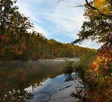 CLARKS CREEK SUNRISE by Lori Deiter