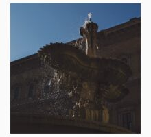 Rome's Fabulous Fountains - Piazza Farnese Fountain Kids Clothes