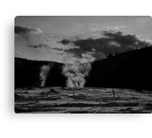 They are always watching Canvas Print