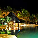 Pool Bar at Sonaisali Island Resort, Fiji by Aaron Murgatroyd