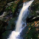 Upper Purgatory Falls by Len Bomba