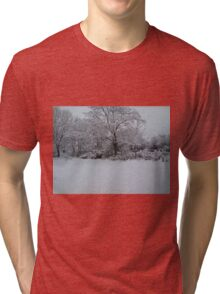 Snowy Scene Tri-blend T-Shirt
