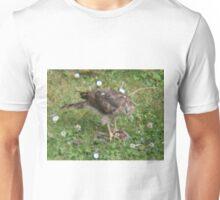 Sparrow-hawk Vs. Sparrow Unisex T-Shirt