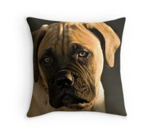 Evening With Ellie Throw Pillow