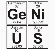Ge-Ni-U-S (genius) by DOinc