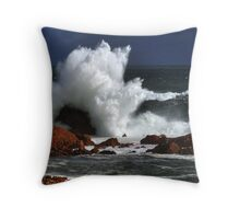 The Second Line of Defence Throw Pillow