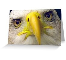 The Eyes have it! Greeting Card