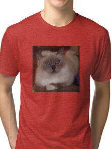 Rosy #1  Tri-blend T-Shirt