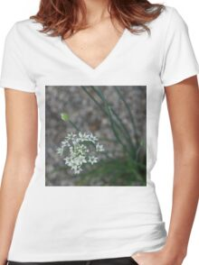 Calming Grays and White Stars Women's Fitted V-Neck T-Shirt