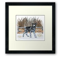 January Puppy .. playing in the snow Framed Print