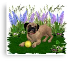 Febuary Puppy .. playing in the garden Canvas Print