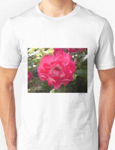Pop Bloom 2 T-Shirt