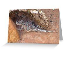Thorny Devil - Moloch Horridus Greeting Card