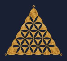 Flower Of Life, Sacred Geometry, Crop Circle, Triangle Kids Clothes